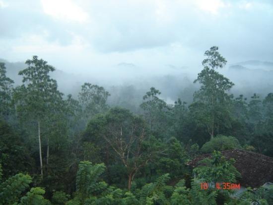 Bentota, Sri Lanka: view from gilbys bungalow sri lanka