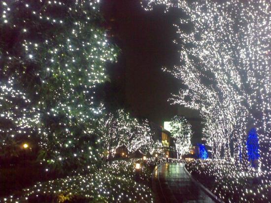 Foto de Shinjuku Mylord Mosaic Street