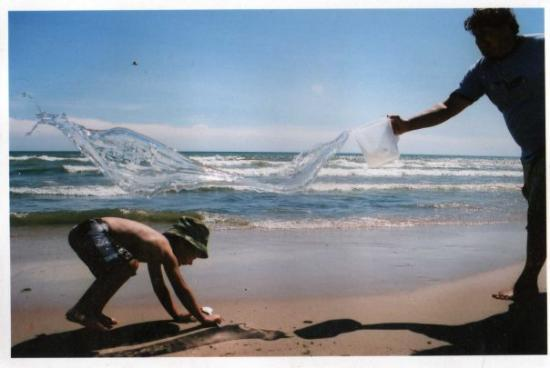 Fish Creek, WI : This is my favorite picture! I was able to catch the water mid-air! White Sand Dunes, Sturgeon B