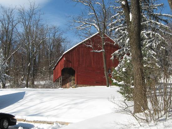 Blair Mountain Bed & Breakfast: Snow at the Barn!