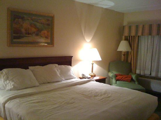 Holiday Inn Express Mt. Pleasant-E Huntingdon : King room