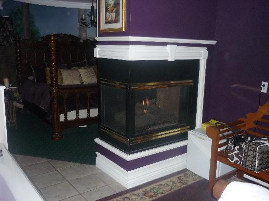Castle Creek Inn: Fireplace in Garden Suite