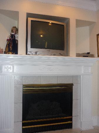 Castle Creek Inn: Fireplace in Rapunzel's Tower
