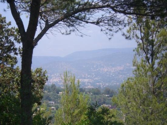Saint-Tropez, Frankreich: a view of the landscape of Provence.  Think Cezanne.