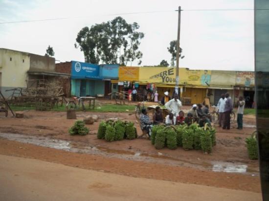 Mbale, Uganda: Banana's for sale
