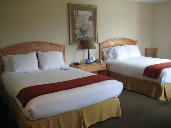 Comfort Inn & Suites : Room 413 (June 2008)