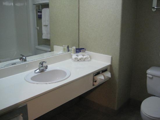 Comfort Inn & Suites : Bathroom (Room 413 - June 2008)