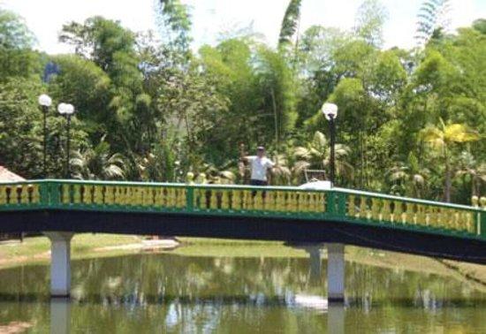 Hostel Monalisa: el buen paisaje de la zona