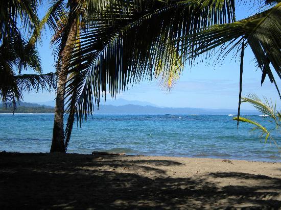 Casa Viva Beach Houses: We love the beaches