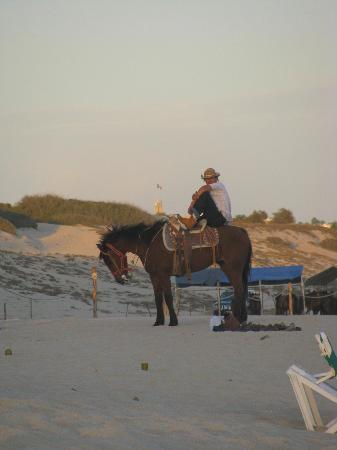 Gypsy's by the Sea - Beach Guest House: baja rider