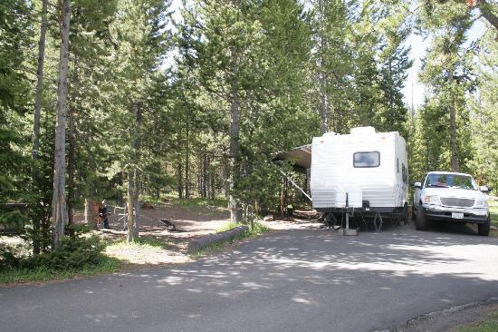 Bridge Bay Campground: You can see the privacy setup here. Firepit and tables to the left amoung trees.