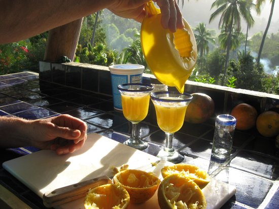 Casa Rosa: Happy Hour at sunset