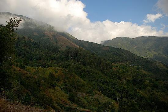Blue Mountains, Kingston, Jamaica
