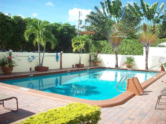 Ocean Lodge: Pool