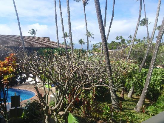 Napili Village: pool, garden, and the ocean in the background