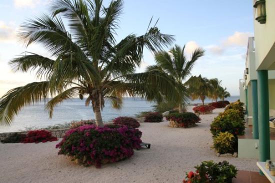 Bilde fra Curaçao