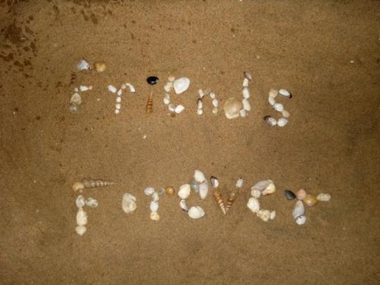 Bilde fra Pondicherry