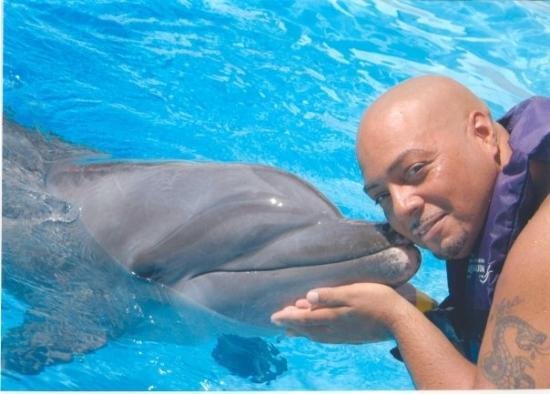 Interactive Aquarium: Dolphin interactive program at the Aquarium.