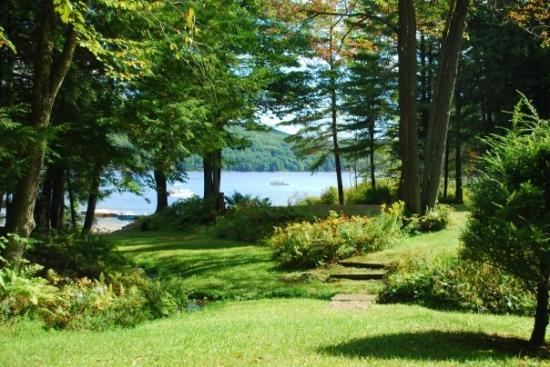 Albany, estado de Nueva York: This is the view of the lake from the front yard of the cabin.