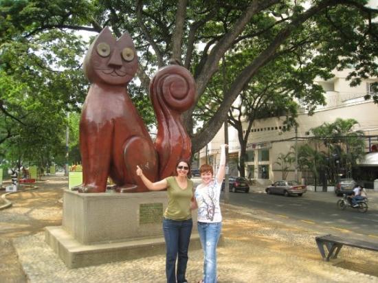 El Gato de Rio a famous sculptor in Cali ..A park full of artistics cats.. was awesome!