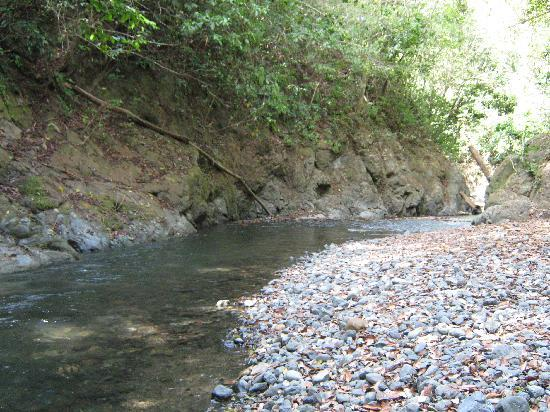 The Rio Claro Clear River And It Is A Short Walk From