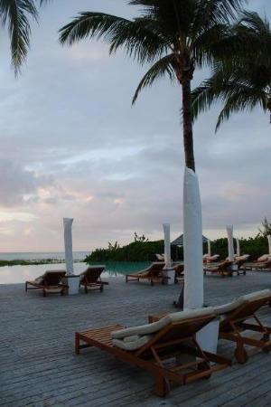 Parrot Cay Photo