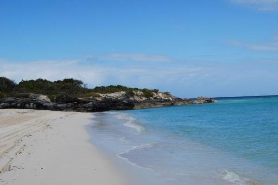 Parrot Cay: Beach again.