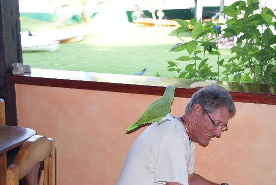 Saladero Eco Lodge: Harvey (our gracious host) he feeds the birds and the guests
