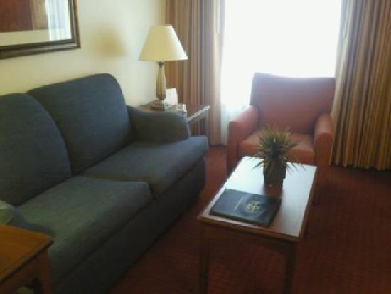 Residence Inn Midland: Living Area