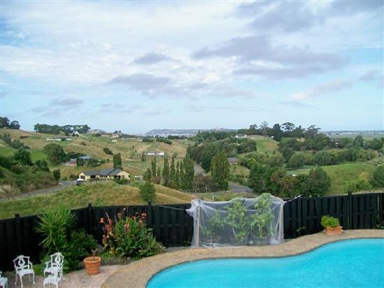 Camellia House: Swimming pool and view