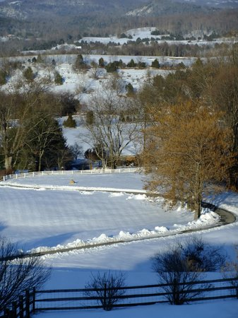 Brierley Hill Bed and Breakfast: Beautiful View from the Deck