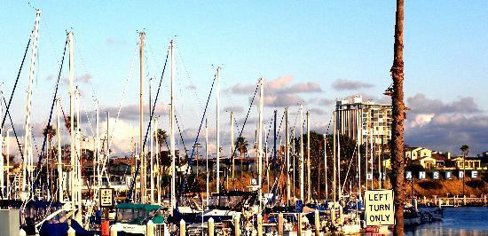 La Quinta Inn San Diego Oceanside: harbor within walking distance
