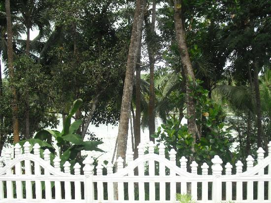 St Bhavan Homestay: LAKE VIEW FROM SITOUT