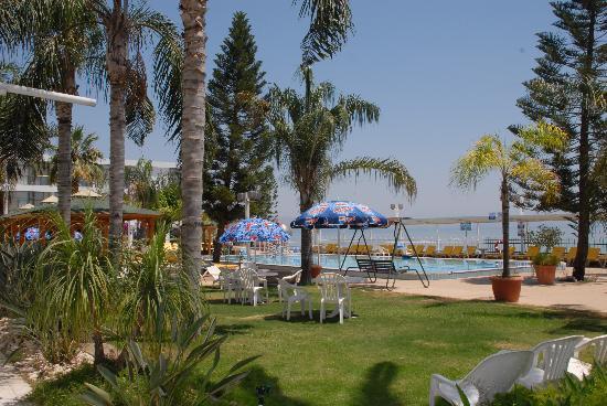 Ron Beach Hotel: garden