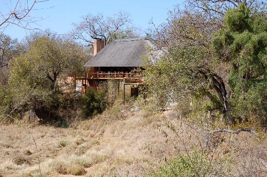 Garonga Safari Camp: The Lodge, from our tented accommodation