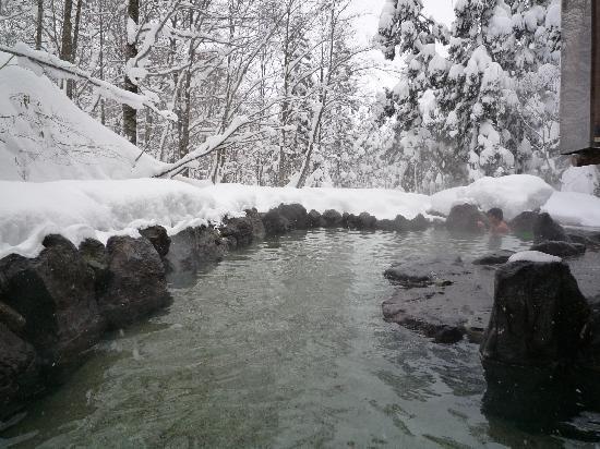 Semboku, Japón: 男女混浴です。女性はちょっとキツイかも。