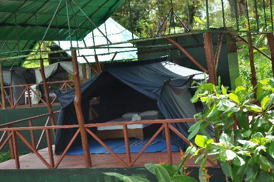 Pura Vista Corcovado Ecocamp: Tent