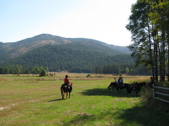 Libby, MT: Riding in the meadow.