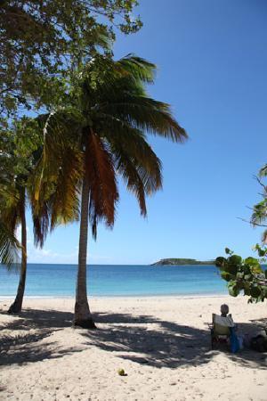 360 Vieques: Heure de la plage