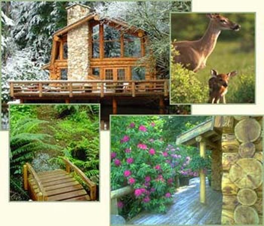 Guest House Log Cottages, A couples Romantic Retreat