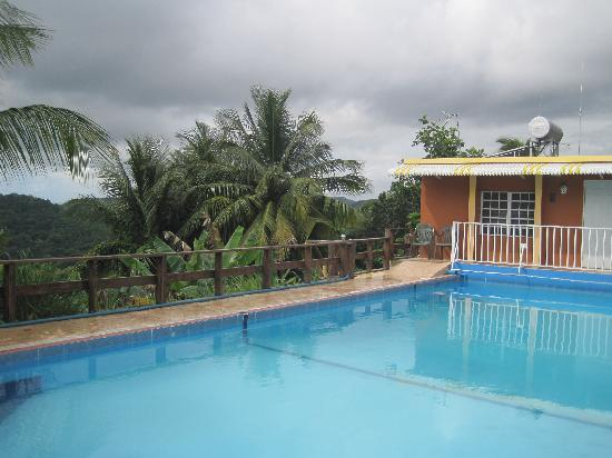 La Paloma Guest House: the pool