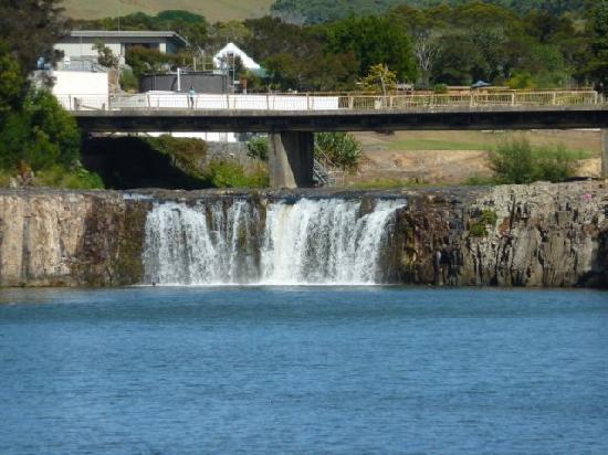 Baystay B&B: The Haruru Falls