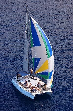 Eden Catamaran: Catamarán