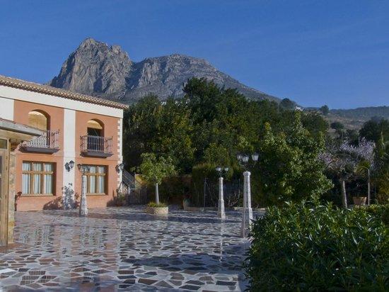 Llar La Morena: La terraza del hotel