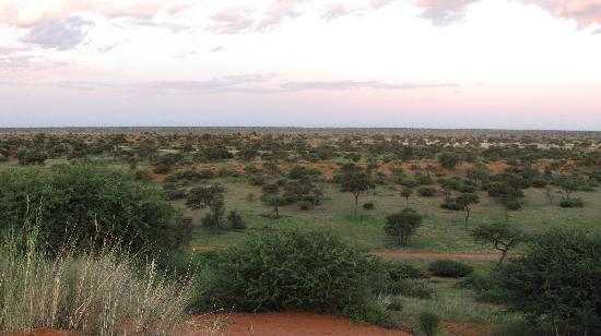 Zebra Kalahari Lodge: Kalahari dunes