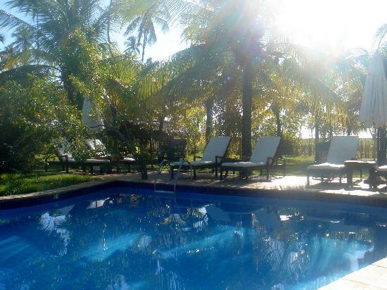 Casa Acayu Pousada & Bungalows: Poolside at Cajú