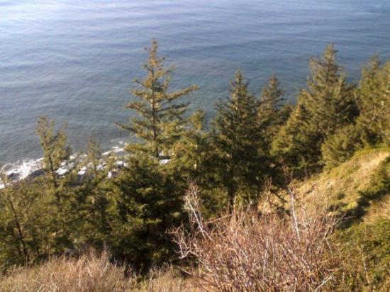 Eugene, OR: the coast of Oregon