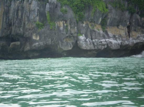 Leyte Island, ฟิลิปปินส์: Palowan, Philippines