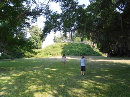 Santee (SC) United States  City new picture : santee indian mound, santee, sc Picture of Santee State Park, Santee ...