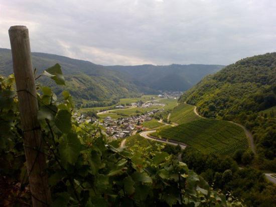 Altenahr, Germany: landschaft